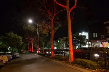 Majors Bay Road lighting installation by Limelight Australia