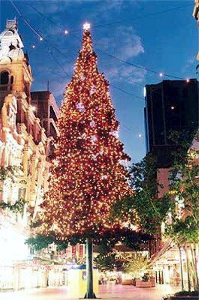Christmas Lighting Pitt Street Mall Sydney